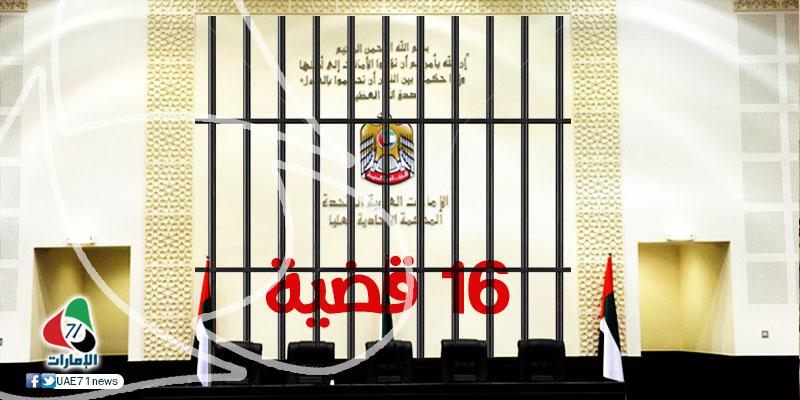 منصور بن زايد يعتمد منهجية الرصد القضائي.. ماذا تقول الأمم المتحدة عن القضاء في الدولة؟