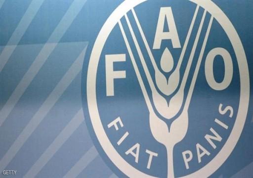 فاو: ارتفاع الأسعار العالمية للأغذية في أبريل بقيادة الألبان واللحوم