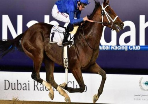 تأجيل كأس دبي العالمية للخيول إلى العام المقبل