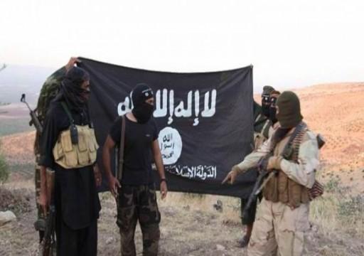 التحالف الدولي يعلن مقتل قياديين اثنين من تنظيم الدولة في سوريا