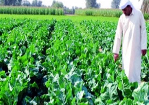 قد تكون مهددا جديدا للصحة.. أبوظبي تخفف إجراءات السلامة على استيراد المحاصيل المصرية
