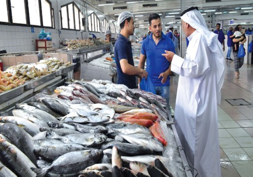 اضطراب الطقس في الدولة يحرم صيادين من نزول البحر لليوم الرابع