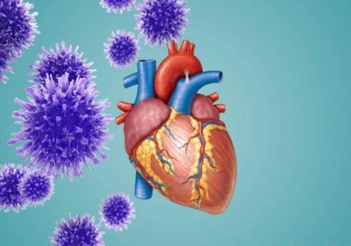 دراسة: فيروس كورونا يصيب خلايا القلب ويتكاثر فيها