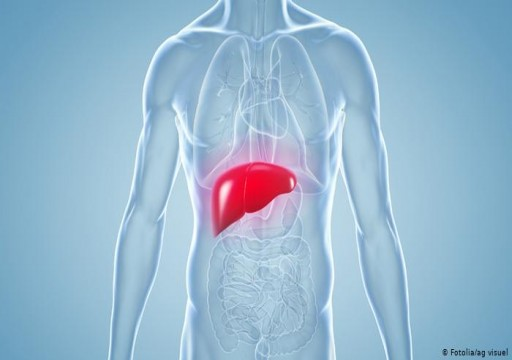 التهاب الكبد.. الأسباب والأعراض والعلاج