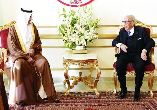 الإمارات: قمة تونس محطة مهمة لتعميق التعاون العربي