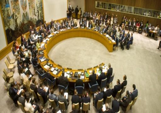 الإمارات تعلن ترشحها للعضوية غير الدائمة في مجلس الأمن