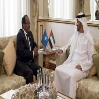 """تقرير: أبوظبي تتلقى """"ضربات موجعة"""" في القرن الإفريقي"""