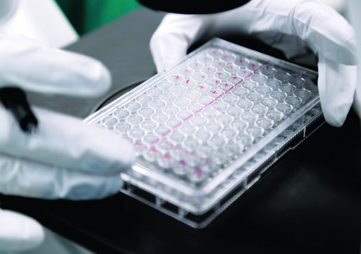 """عقار لسرطان الدم يظهر مؤشّرات إيجابية ضد """"كوفيد 19"""""""