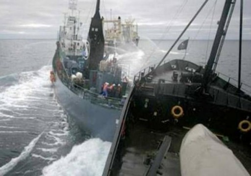 الفجيرة.. إعادة استجواب القبطان في قضية تصادم سفينتين