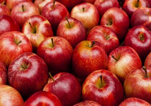 هل سيختفي التفاح الأحمر قريبا من الأسواق بسبب التغير المناخي؟