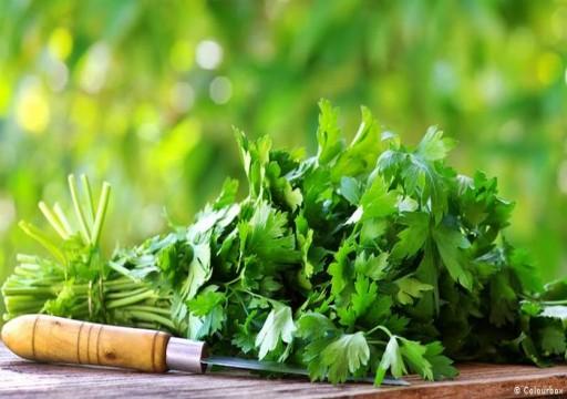 خمسة أعشاب للتخلص من أعراض نقص المغنيسيوم في الجسم