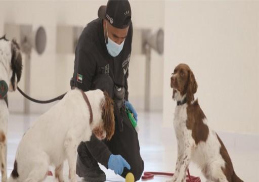 وزارة الداخلية تعلن استخدام الكلاب في الكشف عن مصابي كورونا