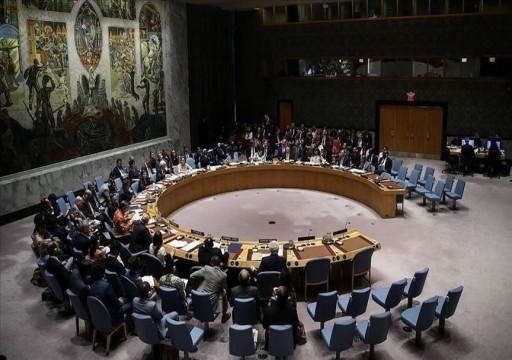 الإمارات تؤكد أمام مجلس الأمن أهمية معالجة الأزمات الصحية للحفاظ على السلام والأمن