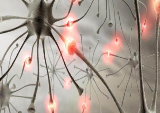 دراسة: فيروس كورونا قد يسبب تلفاً في الجهاز العصبي