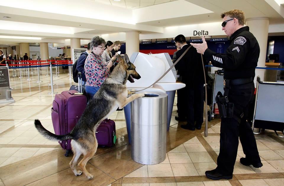 تشديد إجراءات الأمن بمطارات أمريكا بعد فشل اختبارات سرية