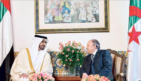 أكاديمي يتهم الإمارات بالعمل على إفشال مبادرة الجزائر للحل في ليبيا