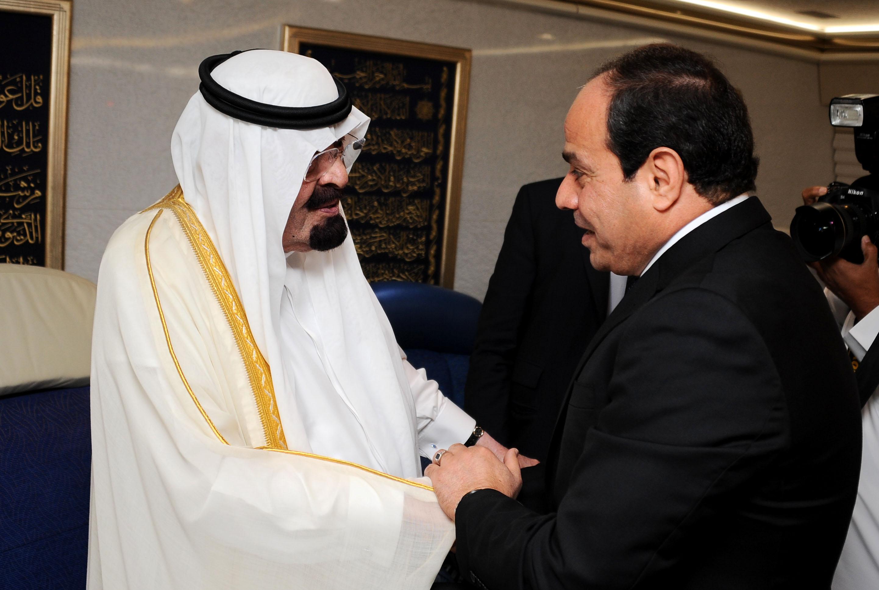 """هيرست: الملك سلمان يعتبر السيسي من بين خطايا حقبة """"عبدالله"""""""