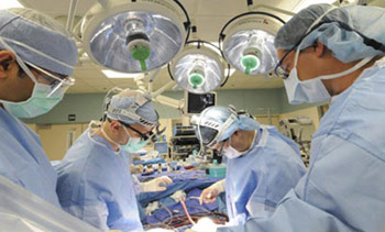 نجاح استخدام الخلايا الجذعية في إصلاح أنسجة القلب