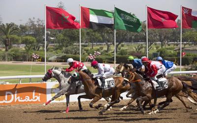 اختتام جائزة رئيس الدولة للخيول العربية في القاهرة