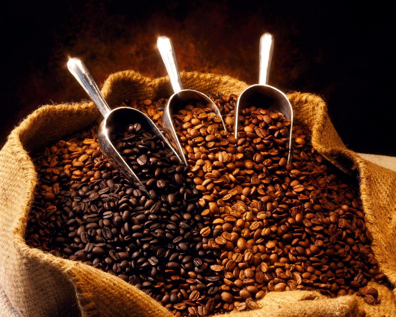 استهلاك القهوة في العالم تضاعف خلال الأعوام العشرين الماضية