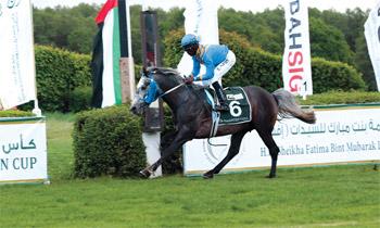 أبوظبي تحتضن مهرجاناً عالمياً للخيول العربية في نوفمبر المقبل