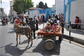 ربع مليون فلسطيني شردوا ودخول هدنة 12 ساعة