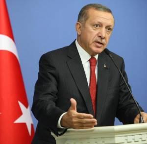 """ديلى ميل: """"أردوغان"""" يخشى من تعرض العالم الإسلامى للتفكك"""