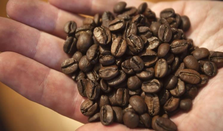 القهوة تقلل خطر الإصابة بالتصلب العصبي المتعدد