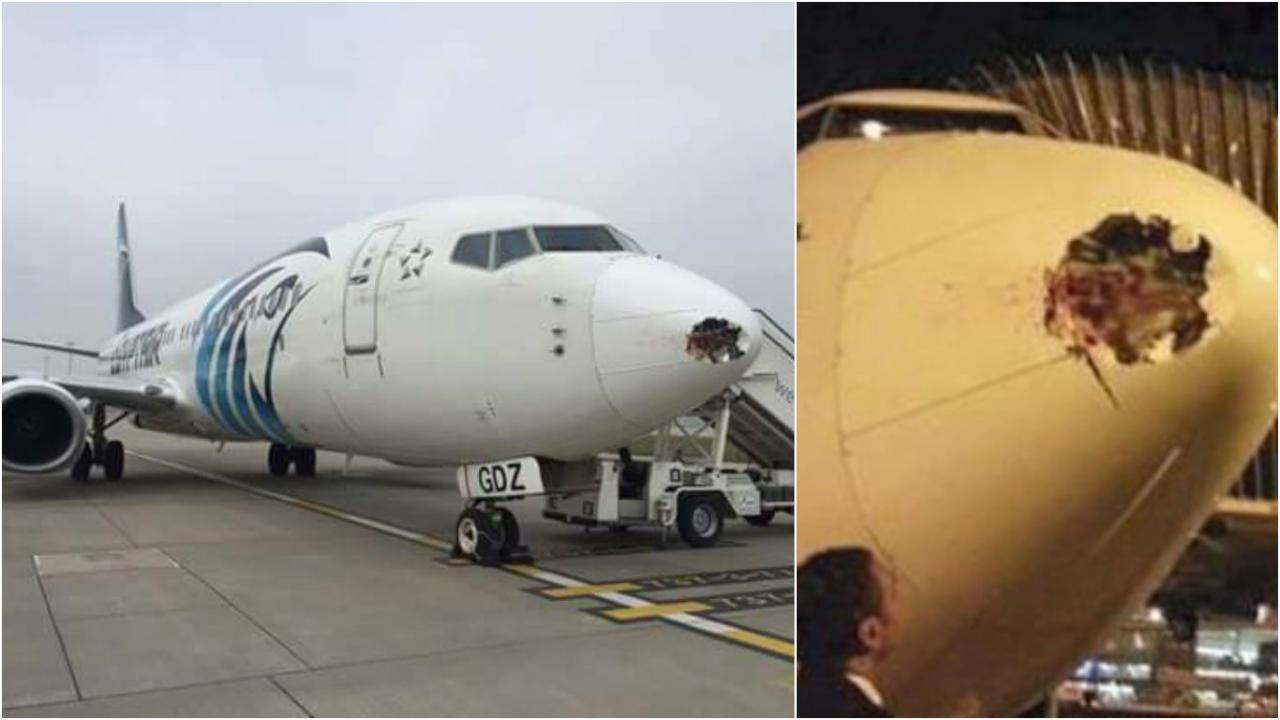 """""""طائر"""" يهاجم طائرة ركاب مصرية في الجو ويحدث بها ثقباً"""