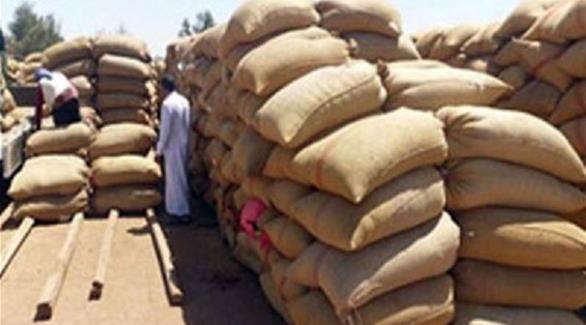 مصر توقف توريد القمح حتى مارس 2015