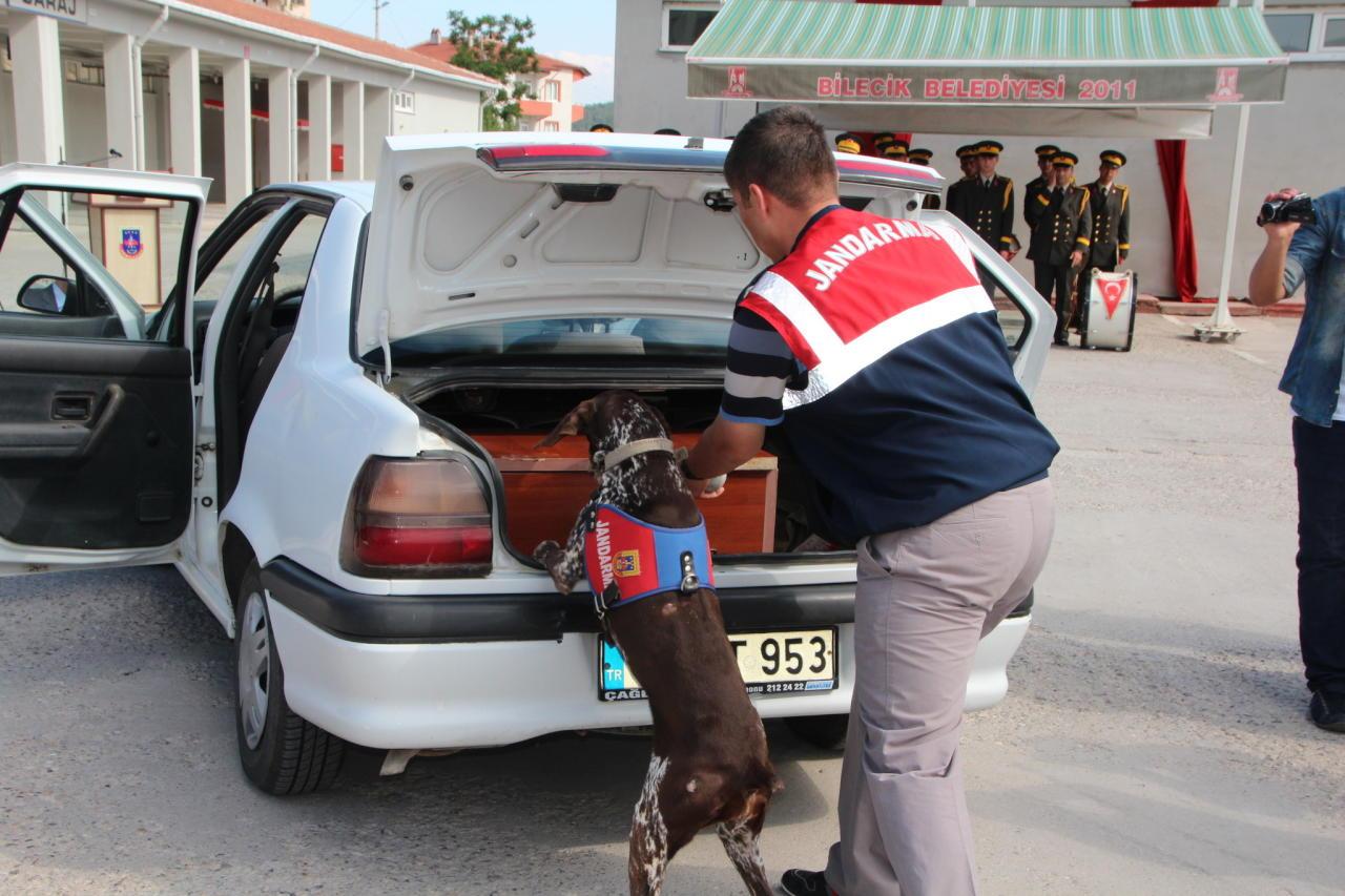 الأمن التركي يعثر على طن من المتفجرات شرق البلاد