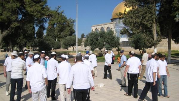 70 مستوطنًا يقتحمون المسجد الأقصحى