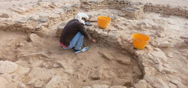 حفريات جديدة تكشف عن أقدم آثار للمجتمعات الإنسانية في أبوظبي