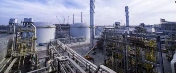 أرامكو ستخسر 300 مليار دولار إن لم تبرئ ساحتها من دعم الوقود