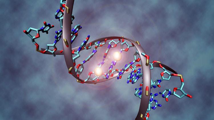 أطباء: الحمض النووي قد يعد دليلا على قرب وفاة الإنسان