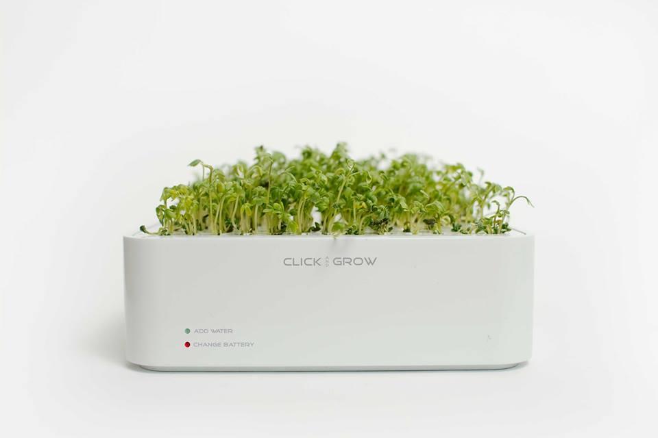 تقنية جديدة: زراعة النباتات صديقة البيئة من خلال الهواتف الذكية